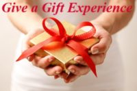 Wellness Spa Holiday Gift Card Special